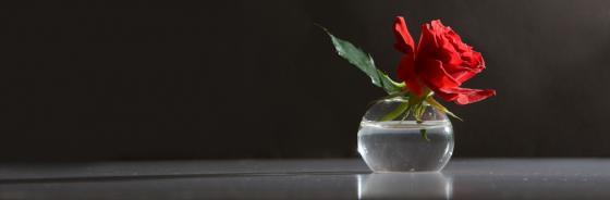 Trauer zum Valentinstag