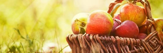 Der Tag des Apfels - 14. Juni