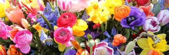 Trauer im Frühling
